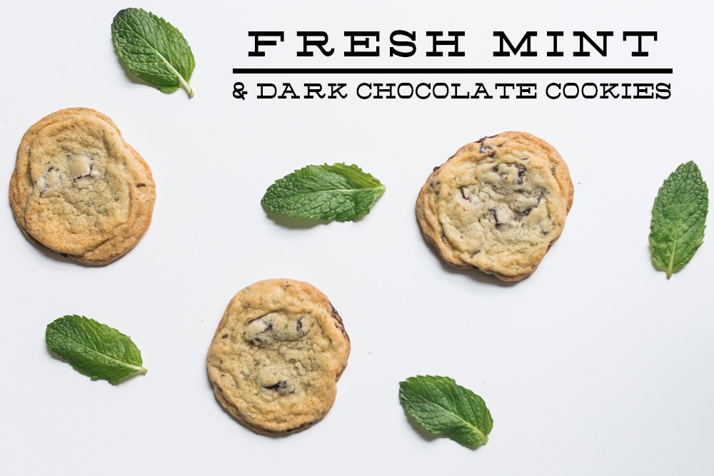 Fresh Mint + Dark Chocolate Cookies | Becca Bakes (www.becca-bakes.com)