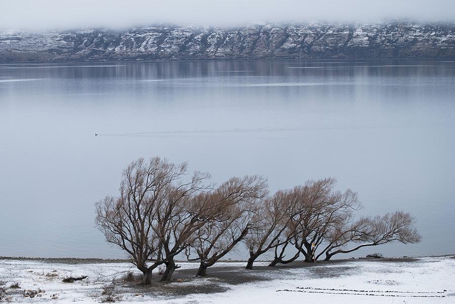 Lake Ohau copy.jpg