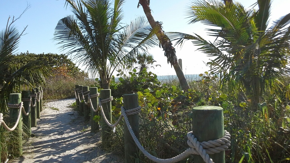 A hike along the beach in the State preserve is full of treasures, maybe a bald eagle, a large conch, or a pod of dolphins.