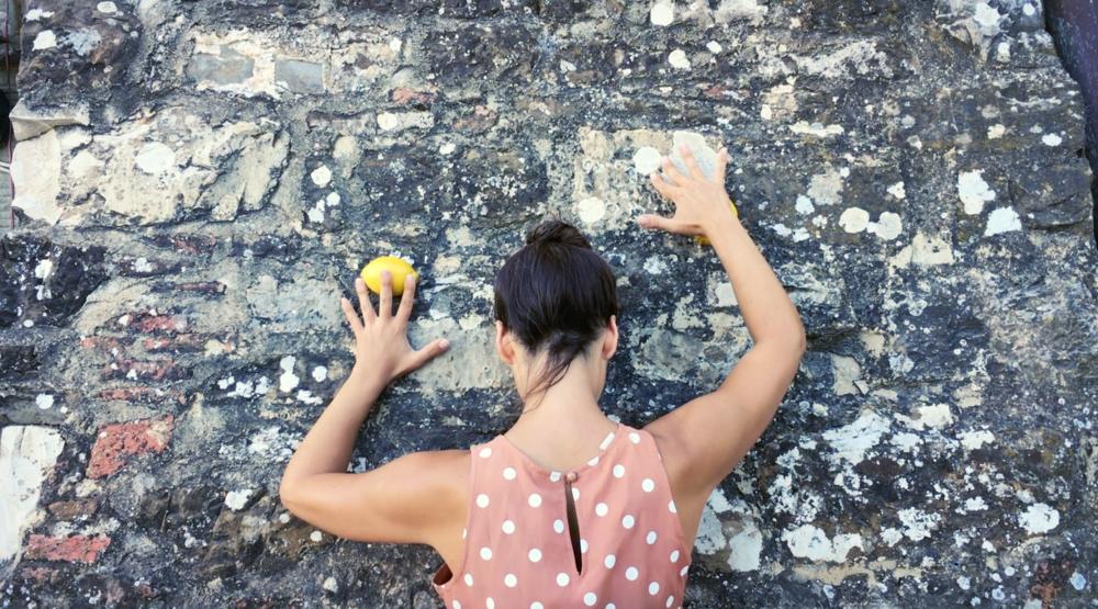 limoni, august 2016.
