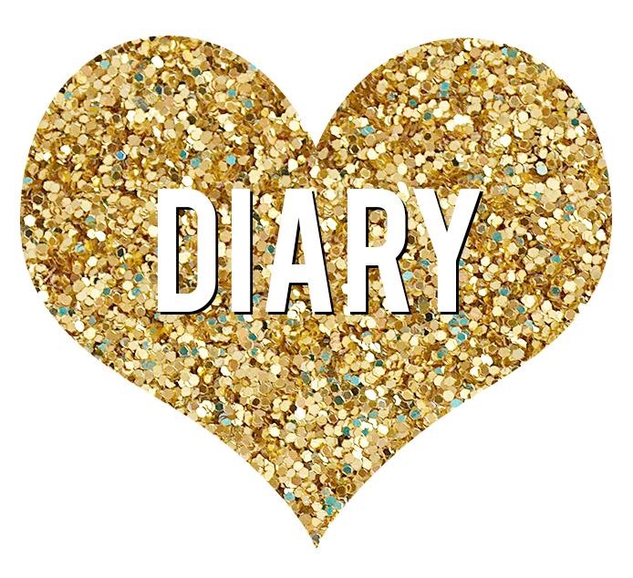diarybutton.jpg
