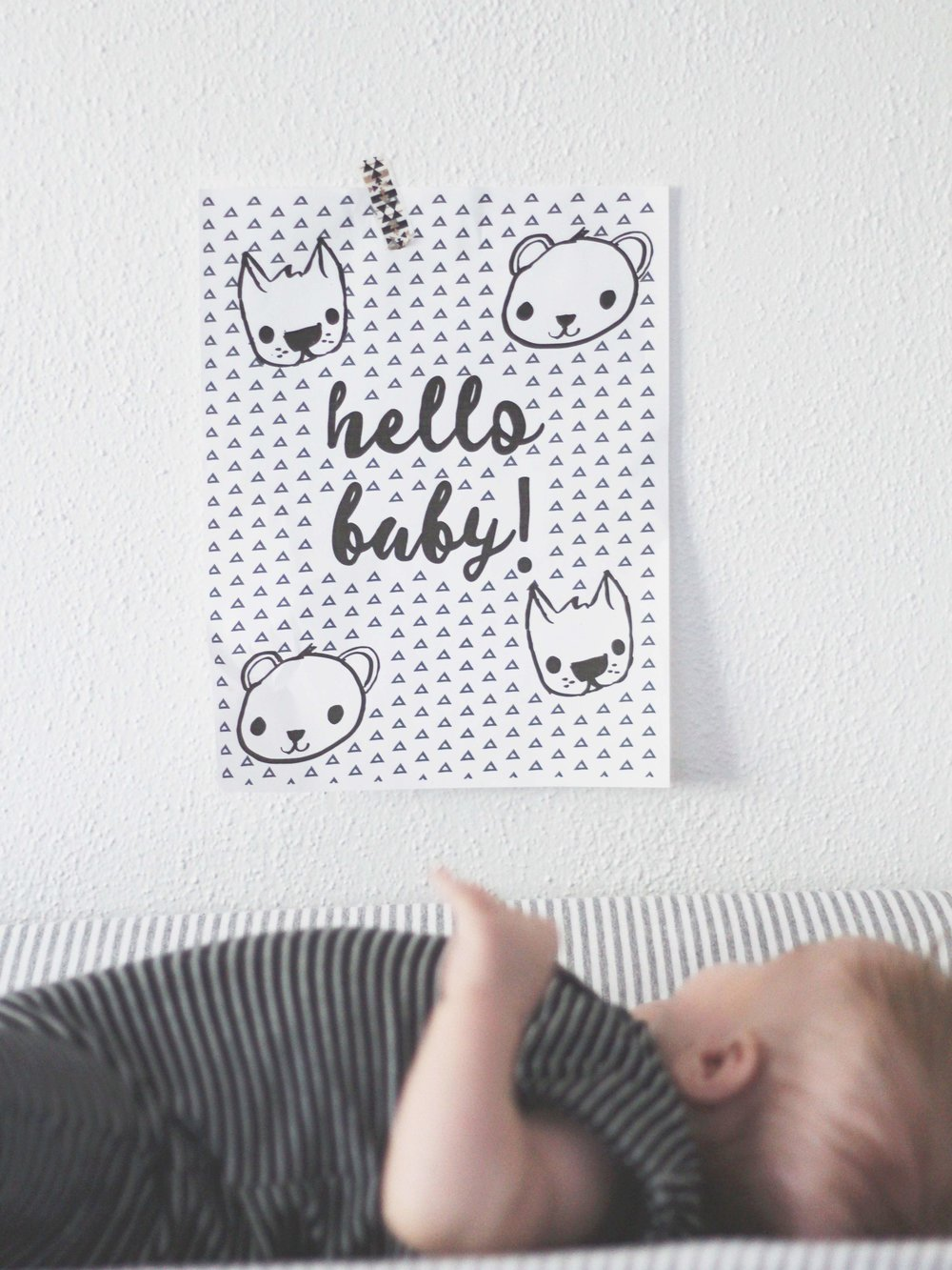 High contrast print for baby's nursery!