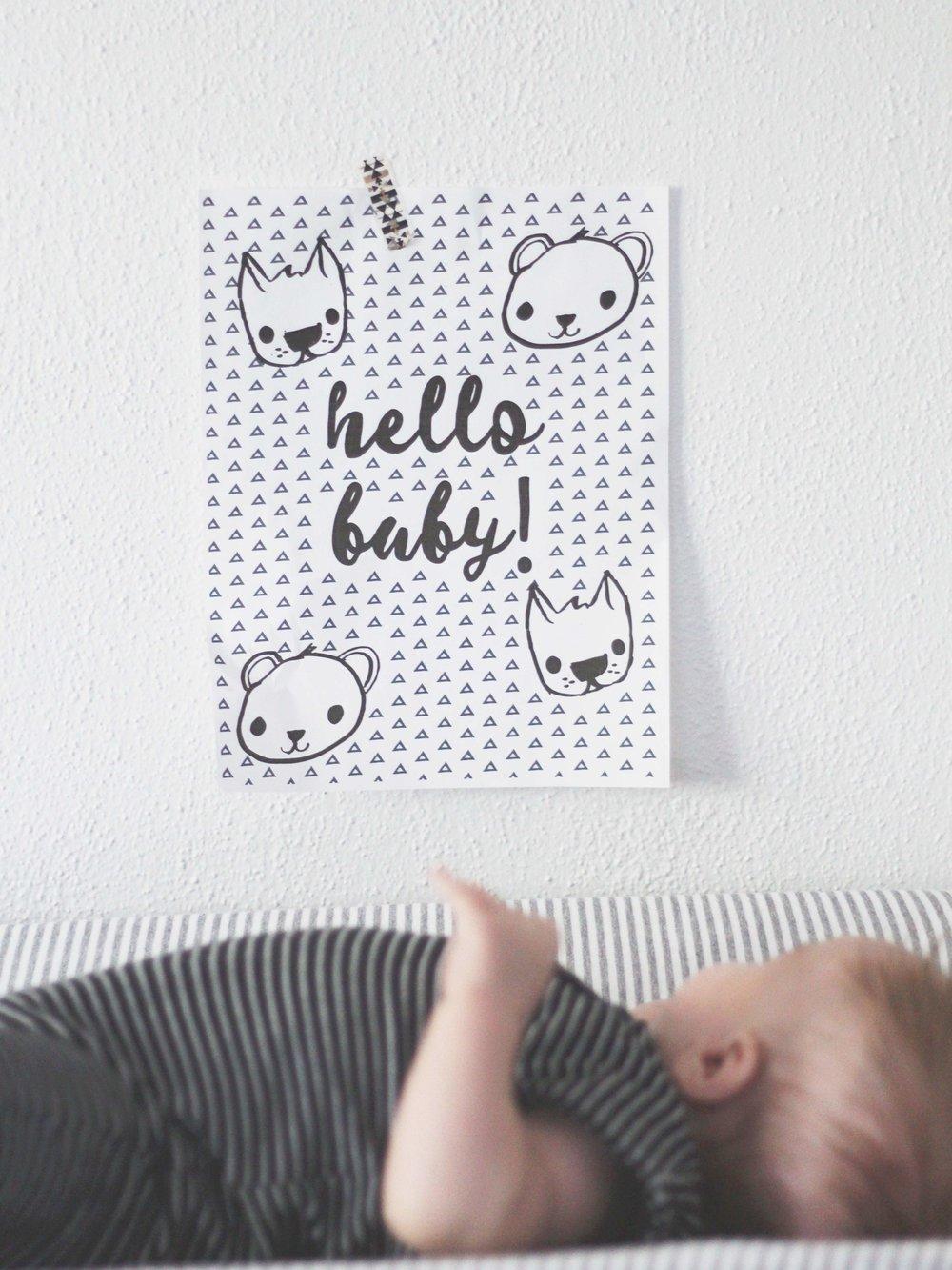 High contrast print for baby's nursery!