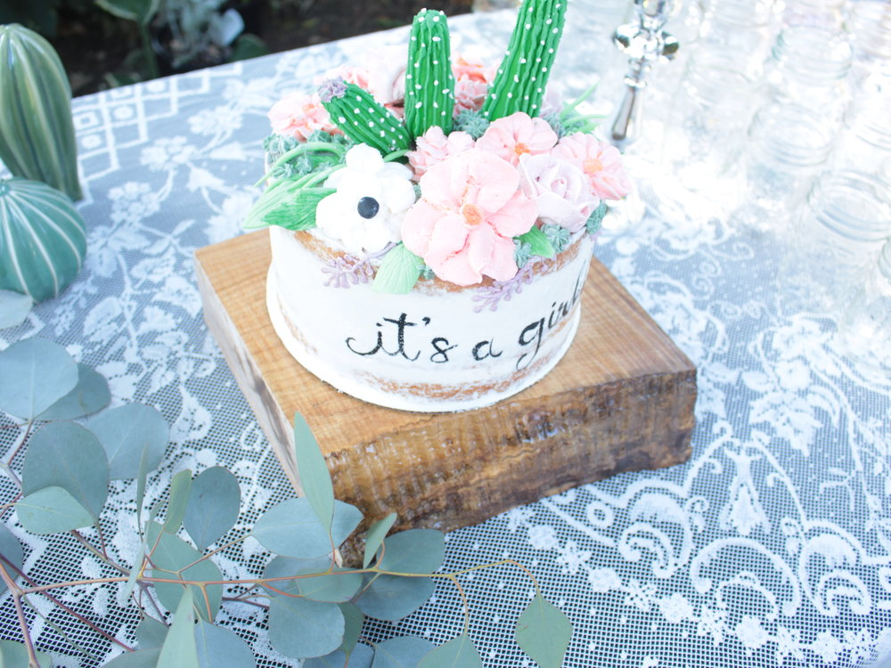 Boho baby girl shower, cactus and succulent cake