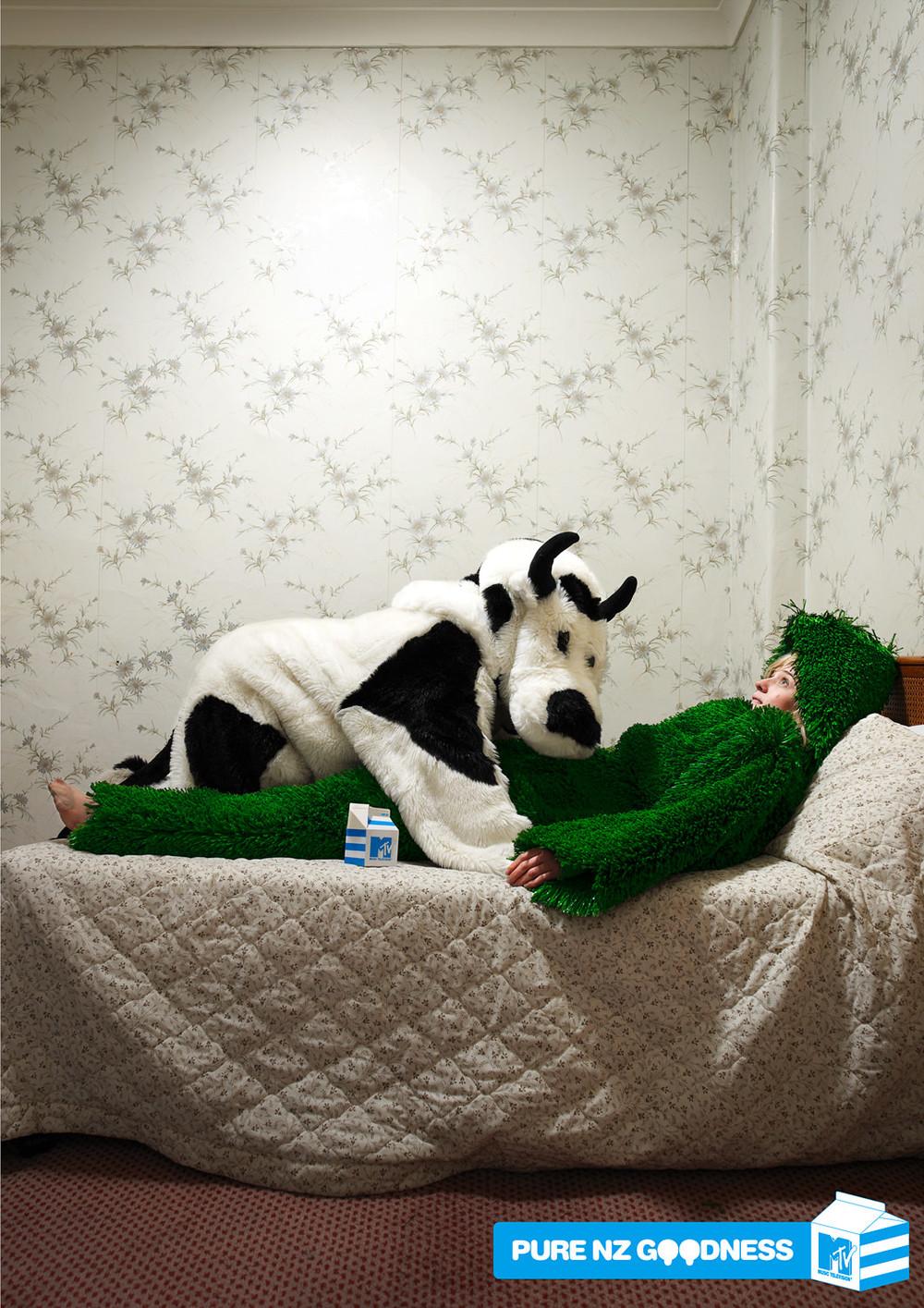 MTV-NZ-COW-GRASS-STEPHEN-STEWART.jpg