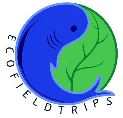 EFT new logo 2016_1.png