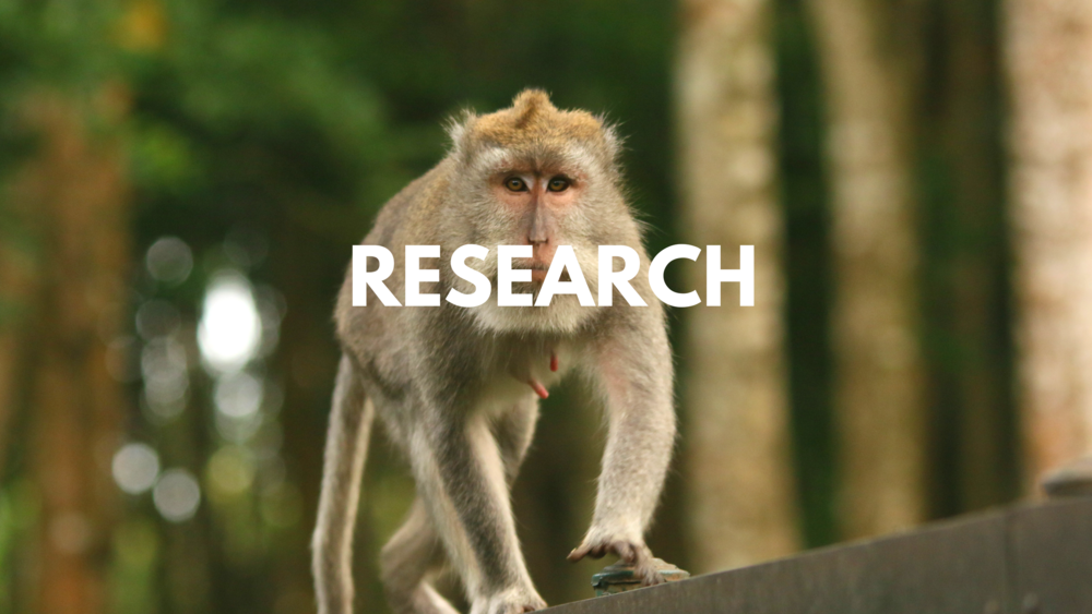 Dissertations and research projects