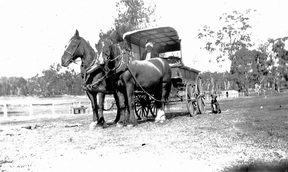 Nehal Singh with his horse drawn wagon and a dog.