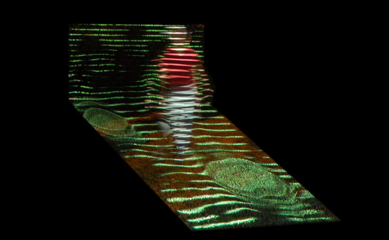 Ein Sof- 2011 - 13x20cm.jpg