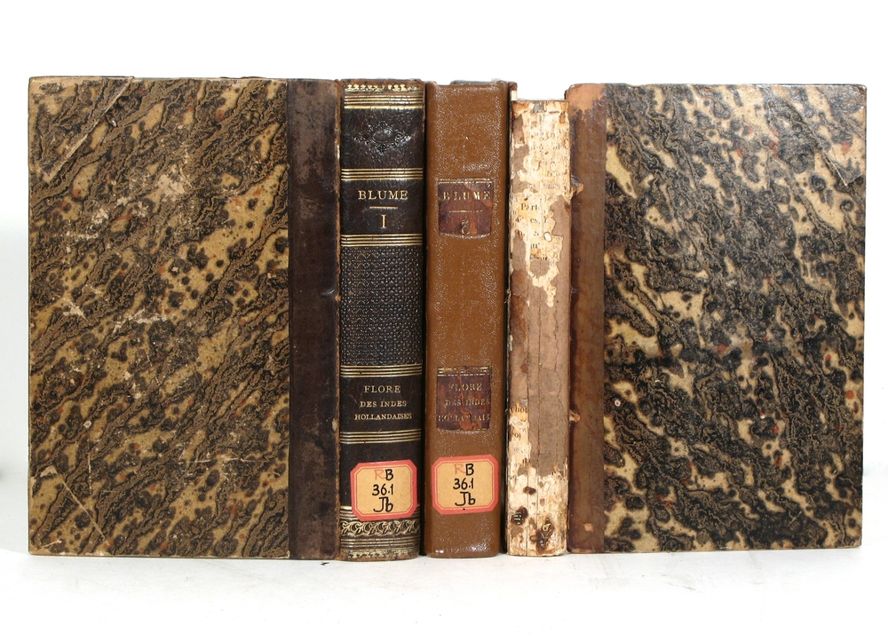 Copies of Existing Book Bindings