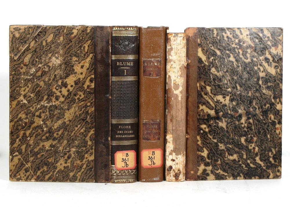Copies of Existing Book Bindings