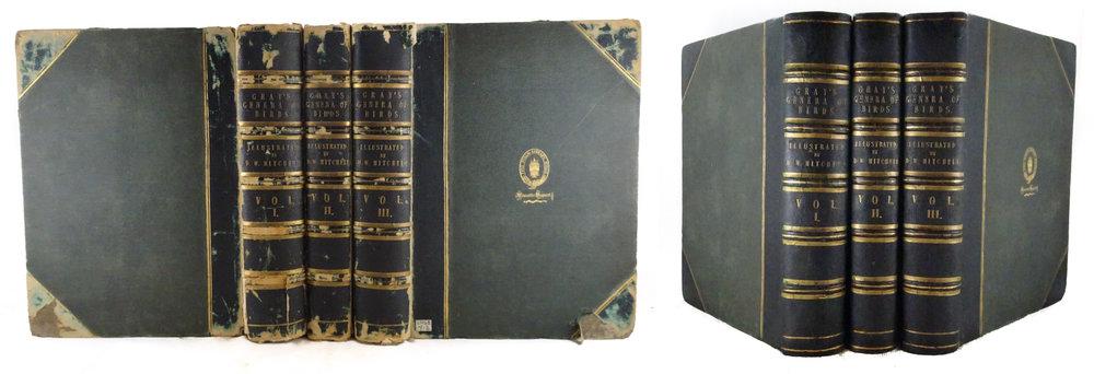 4. restoration 3 vols.9mb.jpg