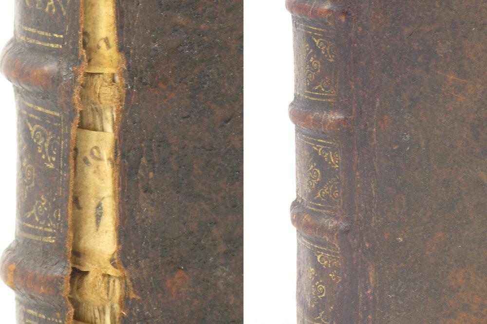 leather fill restoration.10mb.jpg