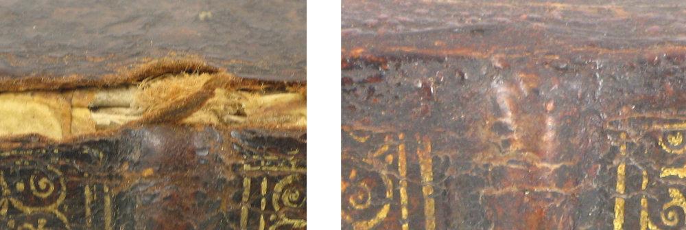 detail 2 restoration.2mb.jpg