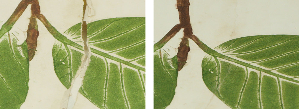 leaf paper repair.11mb.jpg