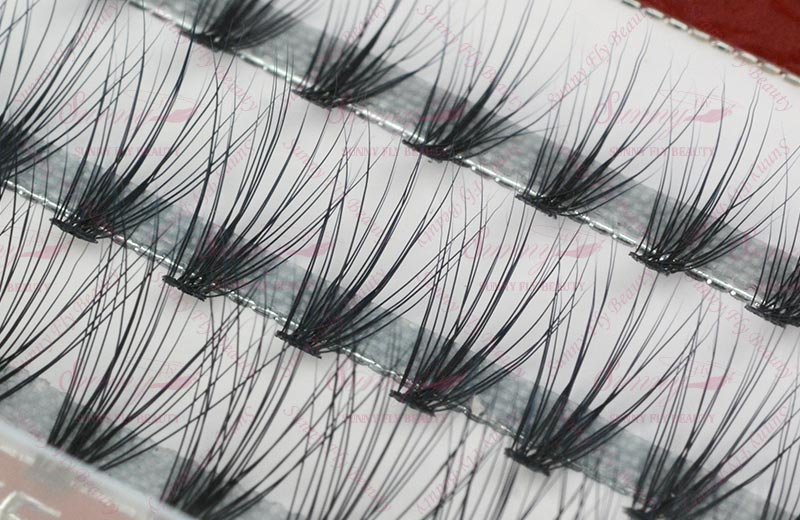 cluster eyelash.jpg