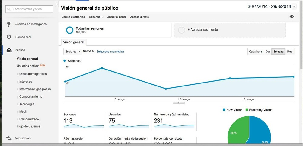 google analytics vision general publico