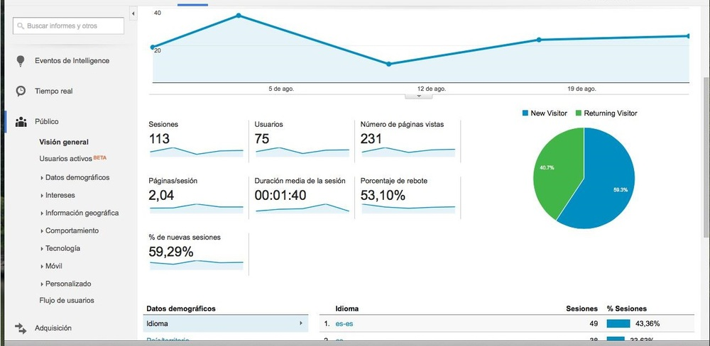 Google Analytics Datos Demográficos 2