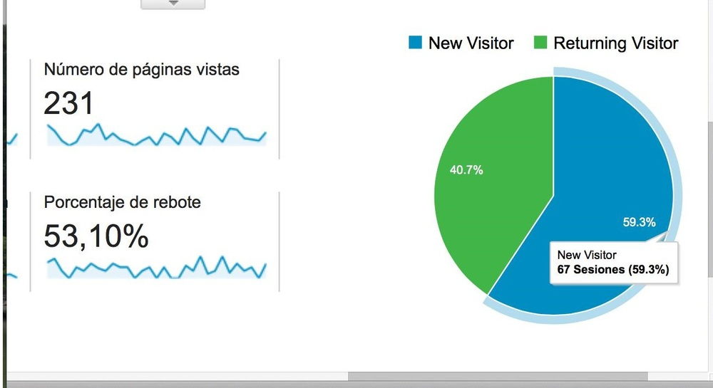 Google Analytics queso visitantes