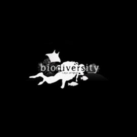 raja-ampat-biodiversity-eco-resort.jpg