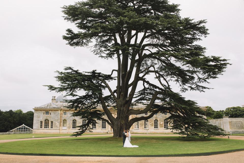 woburn-estate-tree-wedding-photography