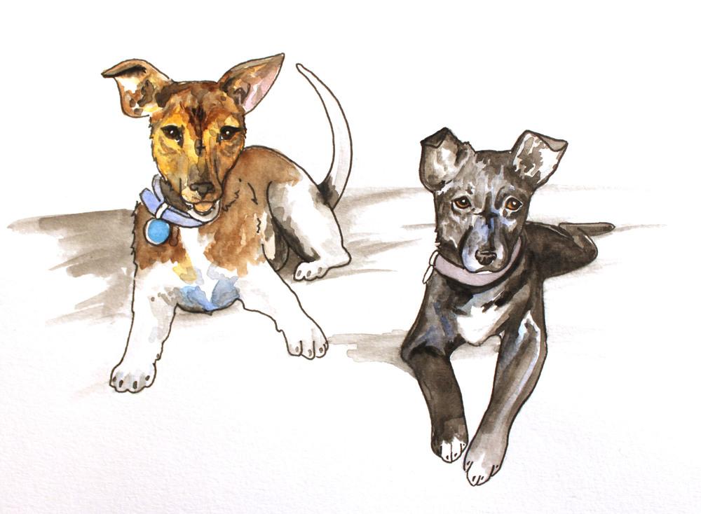 wc.2014.dogs.sophienadine.jpg