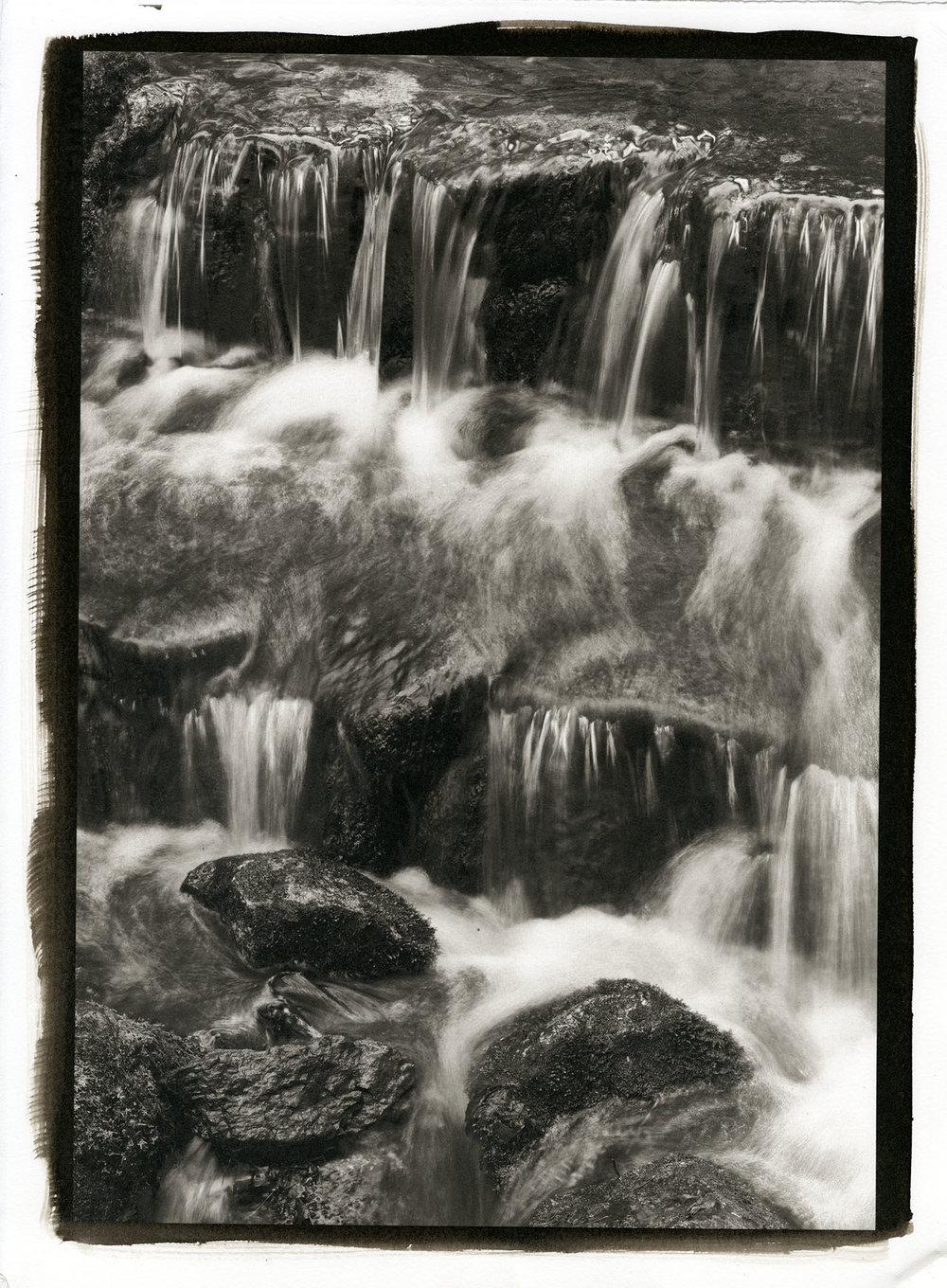 "Fern Creek  (Platinum/Palladium Print, 11 x 14"")"