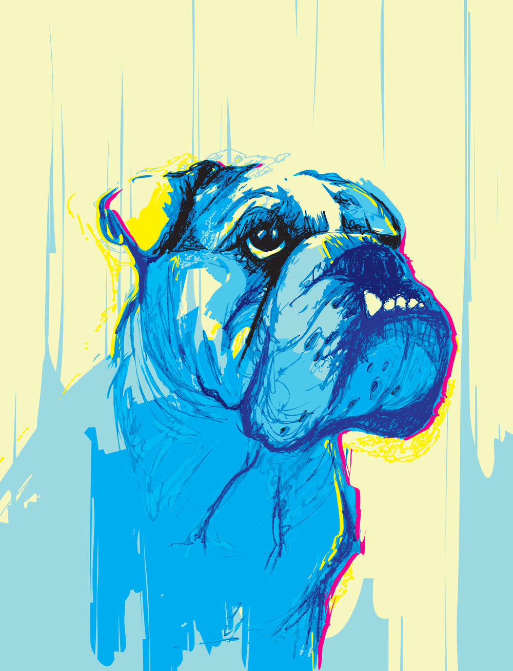 digital-drawing-20-pets-kimbo.jpg