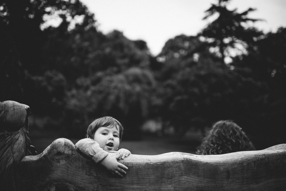 0103-LISA-DEVINE-PHOTOGRAPHY-PORTRAIT-THE-HECHT-FAMILY-4267.JPG