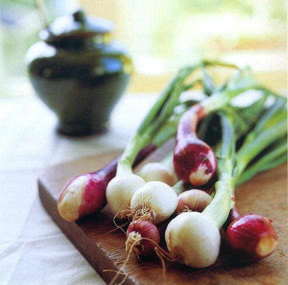 onions copy.jpg