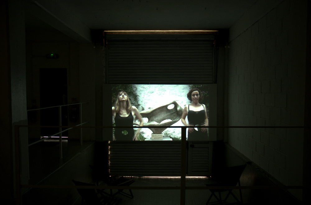 Installation view, [background] Lucy Stein and Shana Moulton,  Polventon,  2013, video, 10:38 minutes