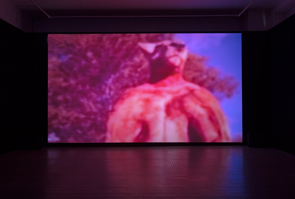 Installation view,  Kangaroo Beach , 2017, video, 5:13, Exeter Phoenix, photo Jamie Woodley