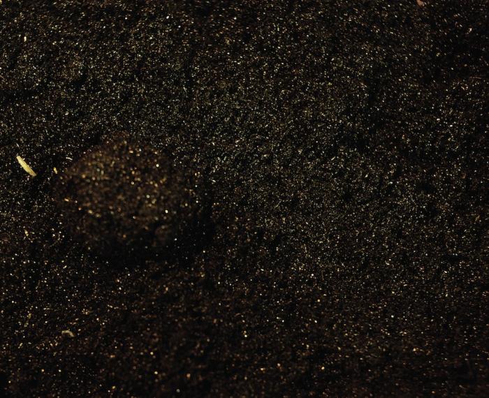 9.pollen.png
