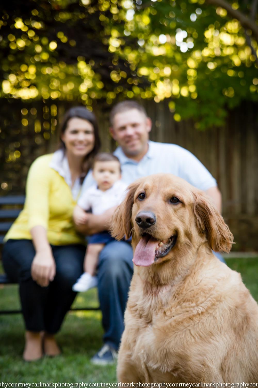 Olson Family-3-2.jpg