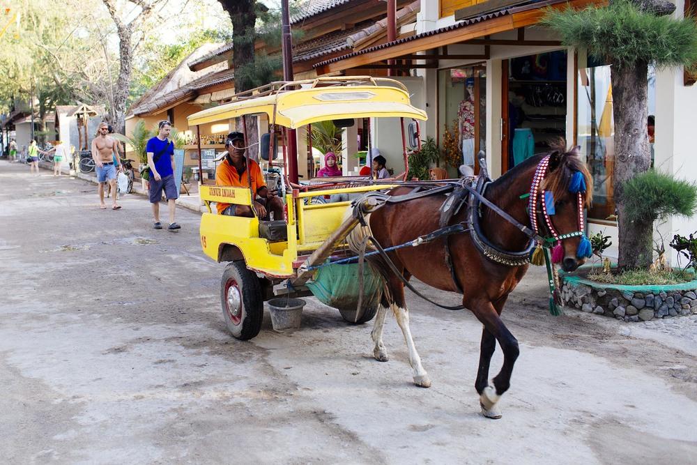 Meio de transporte geralmente pra quem tácom mala