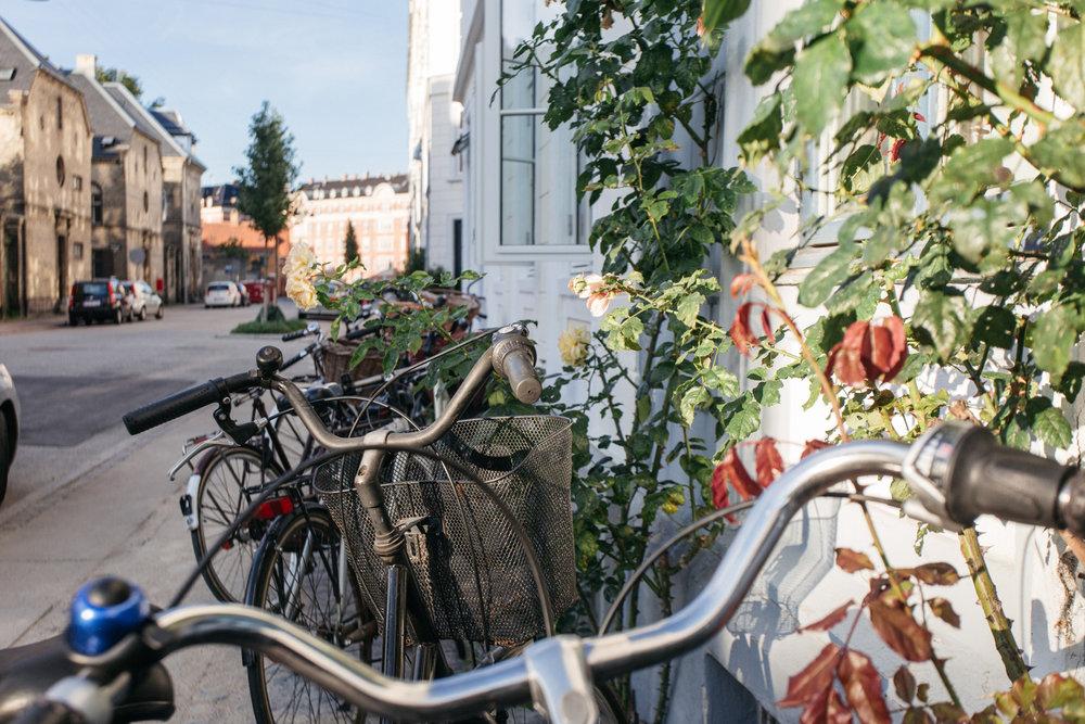 Copenhaguem_2016_00204.jpg