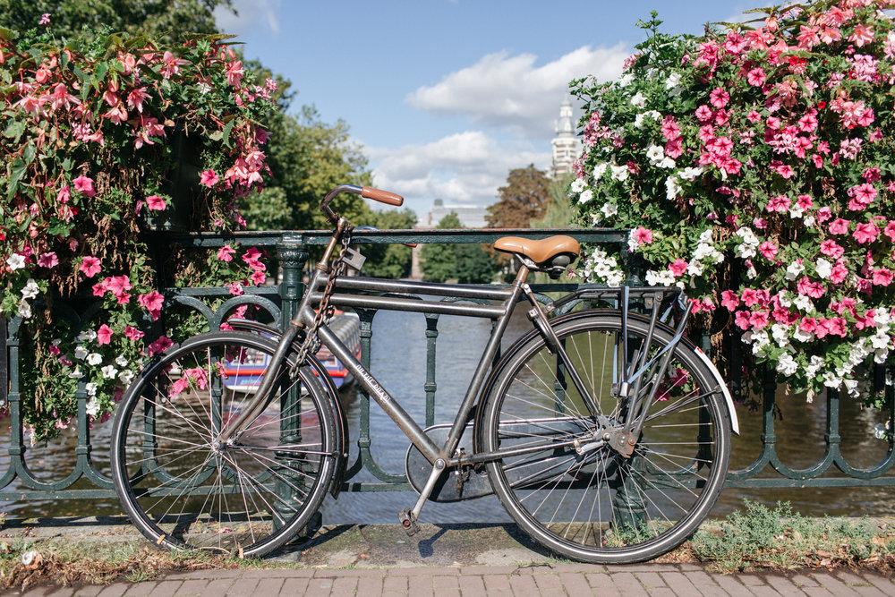 Amsterdam-100.jpg