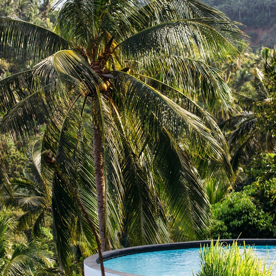 samui tailandia