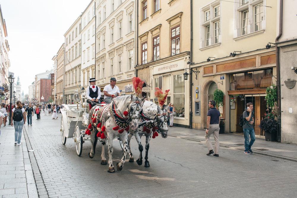 roteiro Cracóvia 1 dia polonia