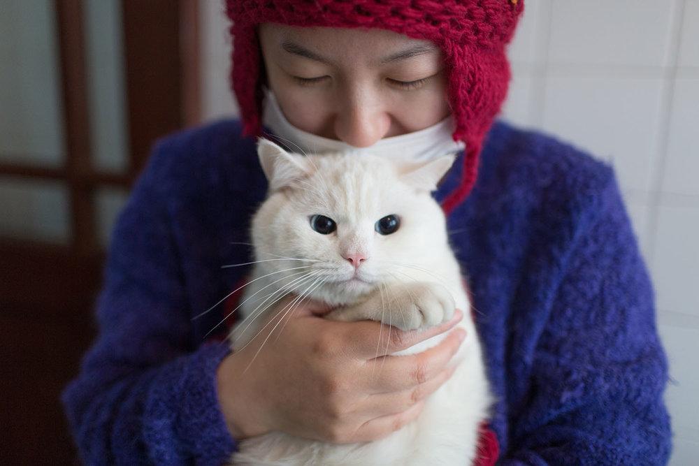 Pets_3.jpg