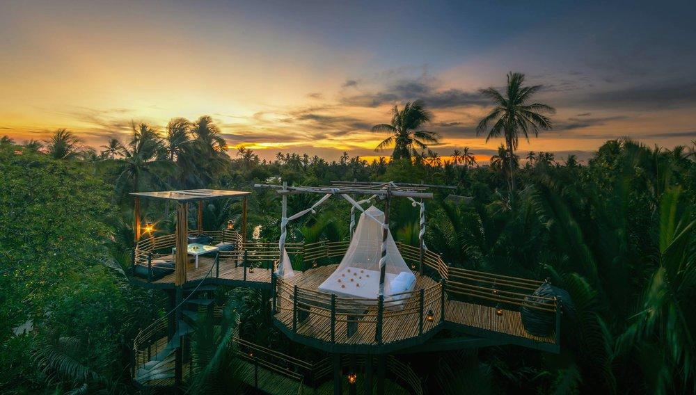 Foto :  Bangkok Tree House