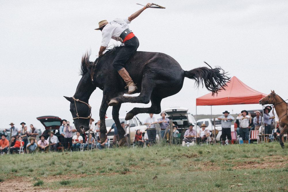 Rodeio PTG_05.05.2018-182.jpg
