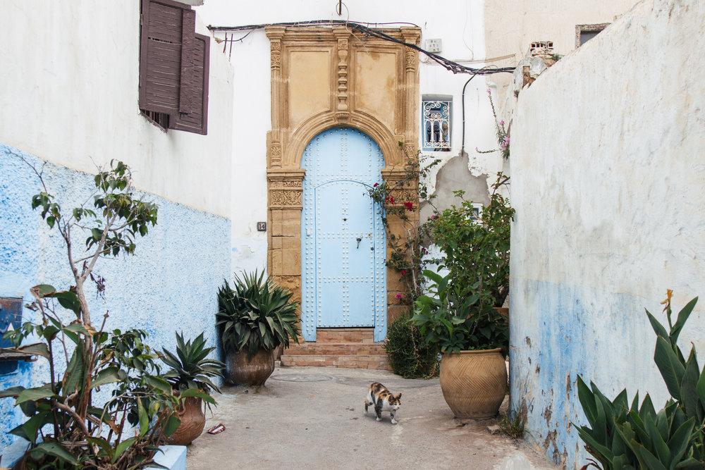 fazer rabat marrocos
