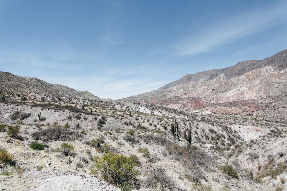 Parque Nacional Los Cardones Argentina