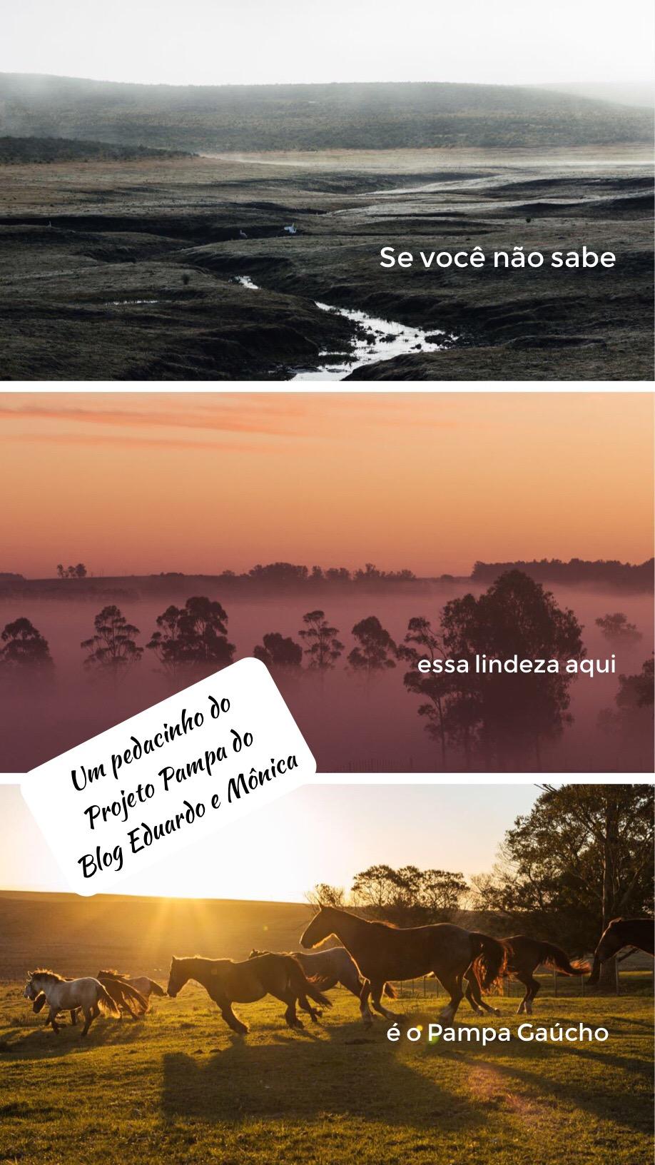 projeto pampa eduardo monica