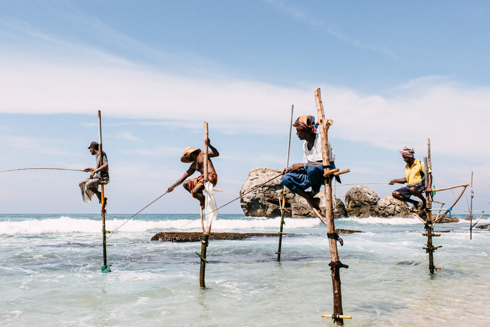 pescadores palafitas sri lanka stilt fisherman