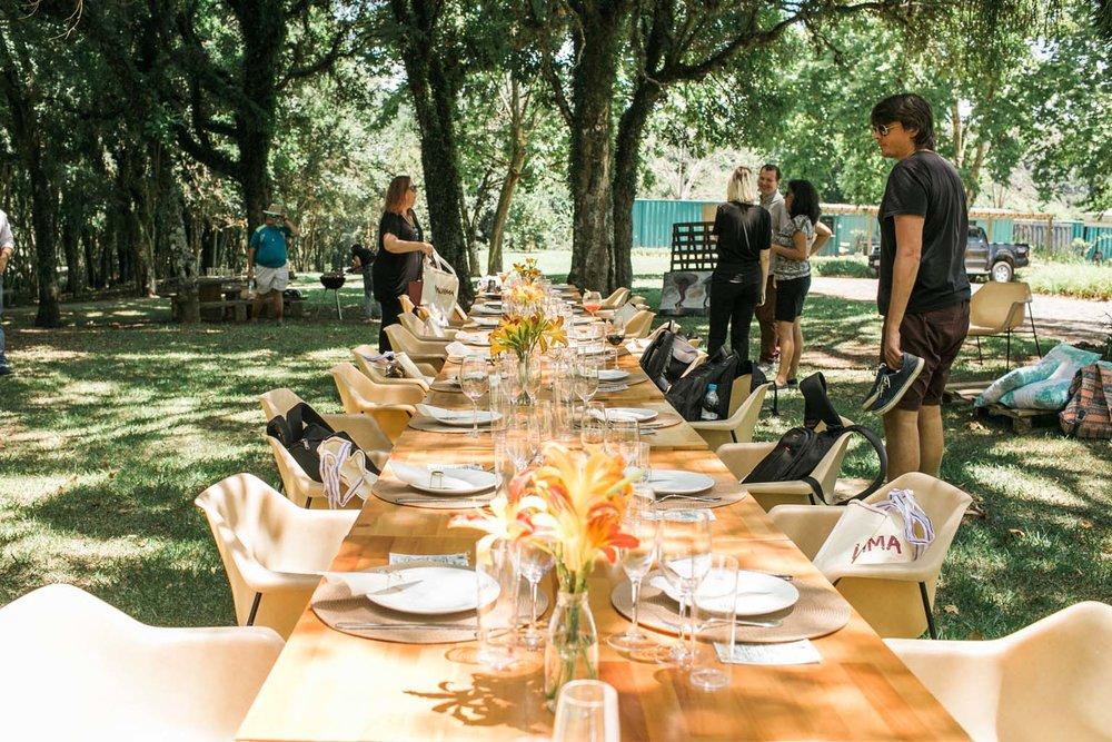 wine garden miolo serra gaucha