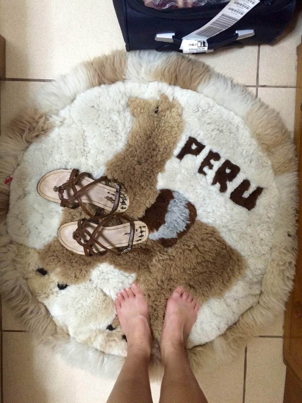 How cute is this alpaca rug though