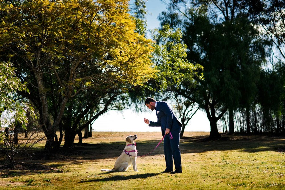 Groom giving his dog a treat with big trees and country setting in background