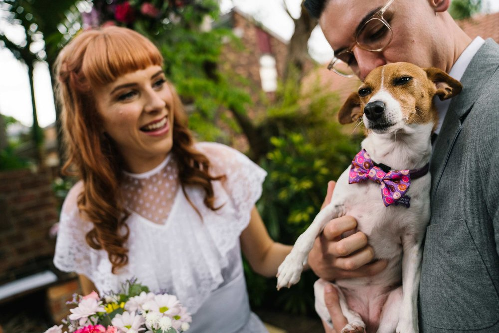 Dog as ring bearer wearing bow tie